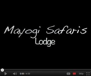 Video of Mayogi Safaris