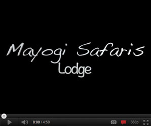Video of Mayogi Safaris